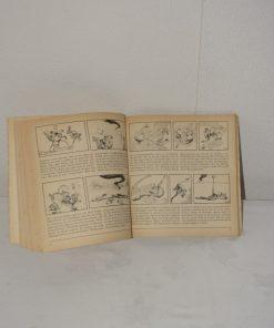 Madamvintage - boekje paulus de boskabouter