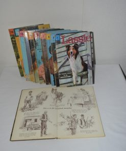 Madamvintage - boeken lassie