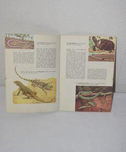 Madamvintage - boekje reptielen