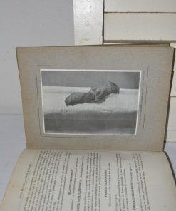 Madamvintage - Boek Nederlandse zoogdieren